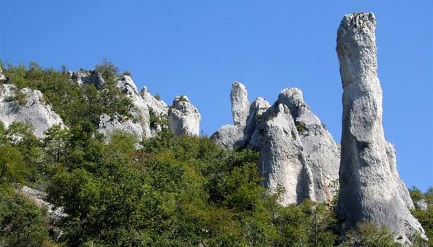 Symbol p�írodní památky Vela Draga. Vápencová v� pojmenovaná Svíce