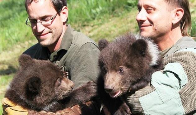 Potomci medv�dice Kam�atky z brn�nské zoo jsou kluci, zjistili jejich