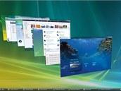 Systém Windows Vista, představený v roce 2006, měl přinést čerstvý vítr po poněkud přesluhujících Windows XP. Na první pohled zaujalo vyparáděné rozhraní Aero, které bylo na oko pohledné, ale i poněkud náročné na systémové prostředky. Robustní systém obsahoval spoustu funkcí, které mohly uživatele zmást. Přepracovaný byl také Start. V době, kdy se začalo prodávat stále více přenosných počítačů a přicházely na trh nevýkonné netbooky, to nebylo to pravé. I proto se na podobných zařízeních začala prosazovat konkurence.