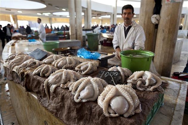 Chobotnice na tr�i�ti v tuniském p�ístavu Sfax