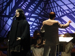 Antony and the Johnsons s Jan��kovou filharmoni� na Colours of Ostrava 2012