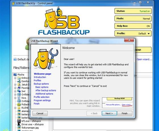 USB FlashBackUp