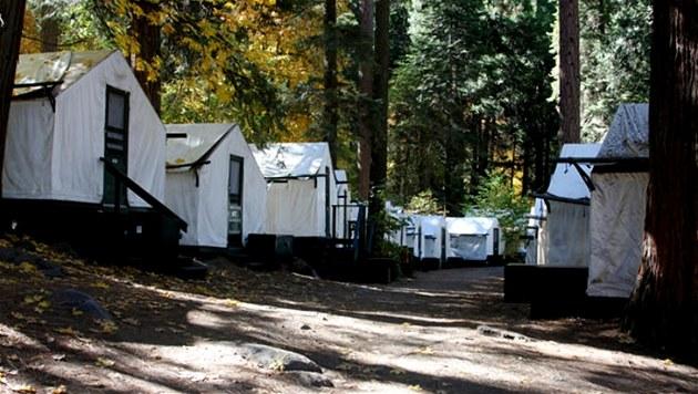 V Yosemitském národním parku se nedávno vyskytl hantavirus. Nákaza se �í�ila v...