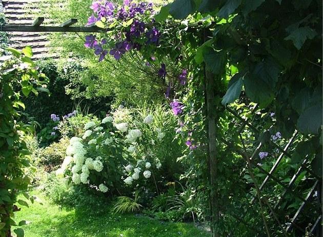 Pohled od vstupu na u�itkovou zahradu zp�t  jezírku