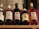 Svatomartinská vína z Litoměřic