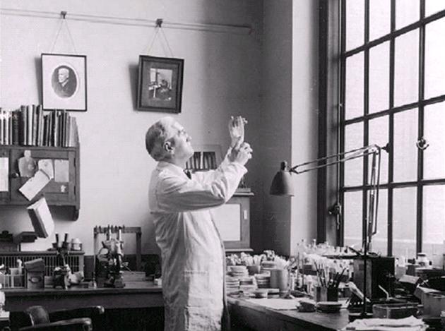 Omylem géniem: Penicilin, Fleming p�i práci ve své laborato�i.