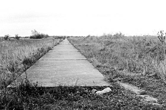 Pravý odstavný pruh u Průhonic (1966)