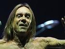 Punkový kmotr Iggy Pop koncertoval 22.6. 2013 ve Frýdku Místku se svou slavnou kapelou The Stooges.