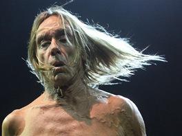 Punkový kmotr Iggy Pop koncertoval 22.6. 2013 ve Frýdku Místku se svou slavnou...