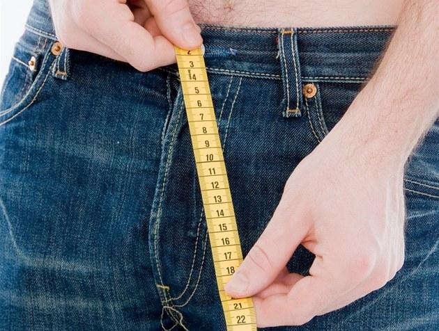 фото голого мужского пениса