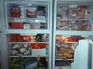 P�es rostoucí ceny potravin tak má Maximus neustále plnou lednici i mrazák a...