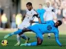 Wayne Rouledge ze Swansea (vlevo) v souboji s  Emmanuelem Adebayorem z Tottenhamu.