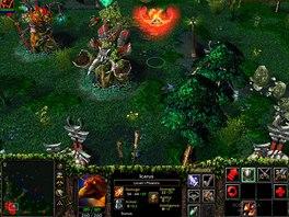 Základní mapa pro Defense of the Ancients z modifikace pro Warcraft 3
