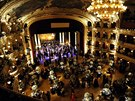 Ples v Opeře (Praha, 8. února 2014)