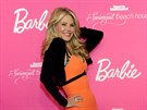 Christie Brinkleyov� na party Barbie a Sports Illustrated Swimsuit (17. �nora 2014)