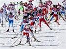 Olympijský závod běžkyň na lyžích na 30 kilometrů volnou technikou. V pravé části snímku je s číslem 13 česká závodnice Eva Vrabcová-Nývltová. (22. února 2014)