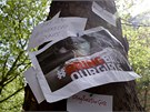 Nigerijci žádají úřady i mezinárodní organizace, aby proti únoscům zakročily. Shromáždění na podporu unesených dívek se konalo i v Londýně. (9. května 2014)