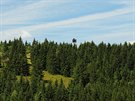 Vizualizace rozhledny Maxovky, která má vyrůst nedaleko Rýchorské boudy v Krkonoších.
