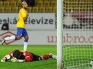 Brankář Milan Heča ze Slovácka krátce poté, co inkasoval třetí gól od teplického Nivalda.