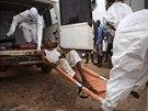 Zdravotníci ve městě Kenema v Sieře Leone převážejí na izolační jednotku muže, u něhož panuje podezření na nákazu ebolou (31. října 2014).