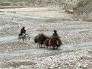 Nejčastějším dopravním prostředkem na venkově je v oblasti Zaré osel (Afghánistán, 27. listopadu 2014).