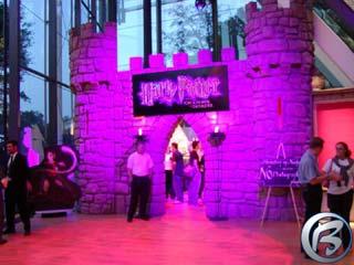 Harry Potter ve fialovém oparu