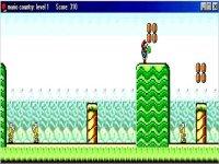 Mario Country