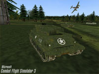 Combat Flight Simulator 3