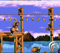 Donkey Kong Country 3: Dixie's Kong's Double Trouble