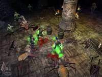 Dungeon Siege - screenshoty