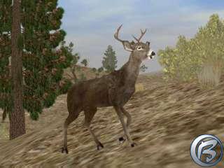 Field & Stream Trophy Hunting 5