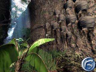 Prostředí amazonských (nebo amerzonských) pralesů je skutečně úchvatné