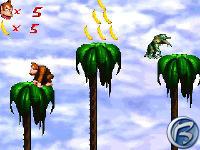 Donkey Kong Rumble