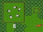 Sheep Boy 2