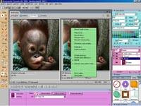 Fireworks MX 2004 - větší obrázek z programu