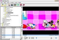 Flash Player Pro - větší obrázek z programu