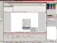 Macromedia Flash 8 - větší obrázek z programu