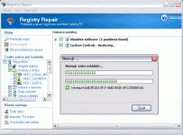 Registry Repair - větší obrázek z programu