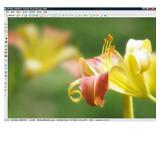 ACDSee Photo Manager 2009 - větší obrázek z programu