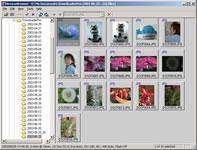 DownloaderPro