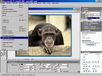 Macromedia Fireworks MX - větší obrázek z programu