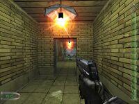 Cyber Skunk 6